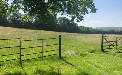 The gate at the bottom of the farm starting the 10 minute walk to Glastonbury Festival Pink Gate (Ped Gate A). We'll also be running a shuttle throughout your stay at Portobello Farm.