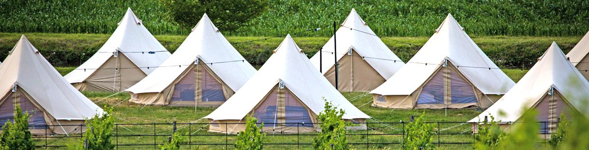 The bell tents all lined up at Portobello Farm. Luxury glamping for Glastonbury Festival!